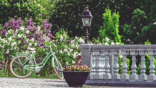 Cycling in Druskininkai